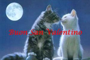 Auguri di San Valentino!